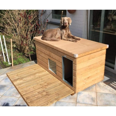 """Caseta para exterior """"Lassie LUXUS con división, ventana y parque exterior"""""""