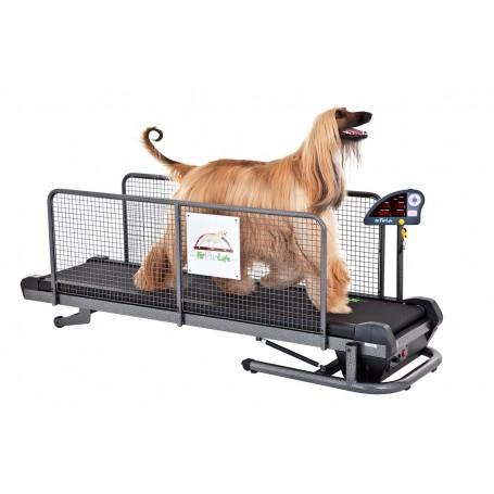 FITFURLIFE PROFESSIONAL Cinta de correr para perros