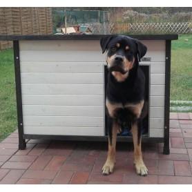 Caseta de madera para perros con esmalte de Color