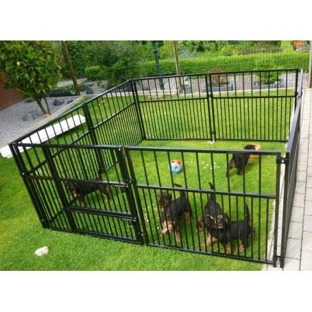 Parque Cachorros Con doble puerta en color negro