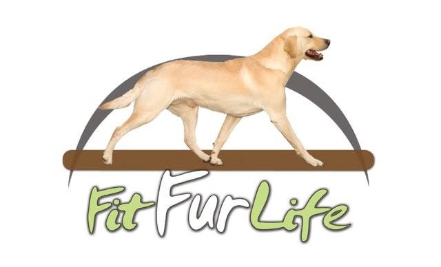 FitFurLife®