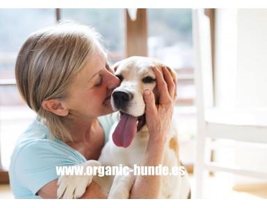 Nuestro Pienso Light bajo en calorías para perros, es sin duda el mejor Valorado!