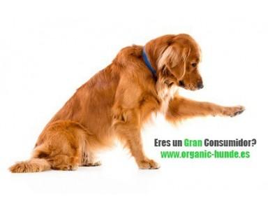Eres un Gran Consumidor? Contacta con nosotros y te daremos nuestra mejor tarifa!
