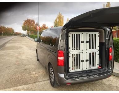Boxes para perros para Citroen Space Tourer Entregados!