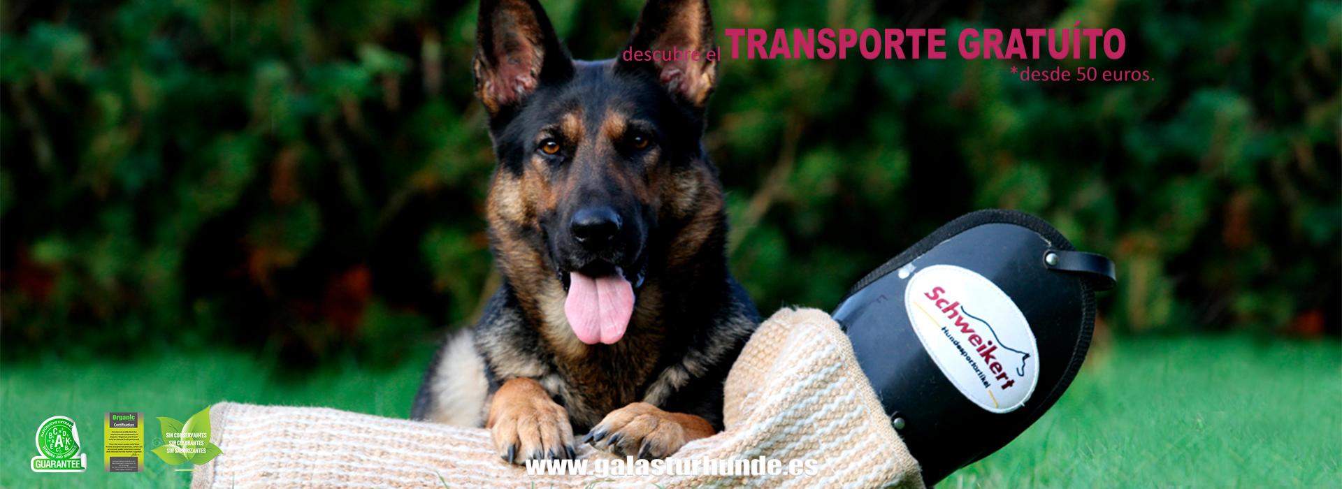 Material de Adiestramiento para perros