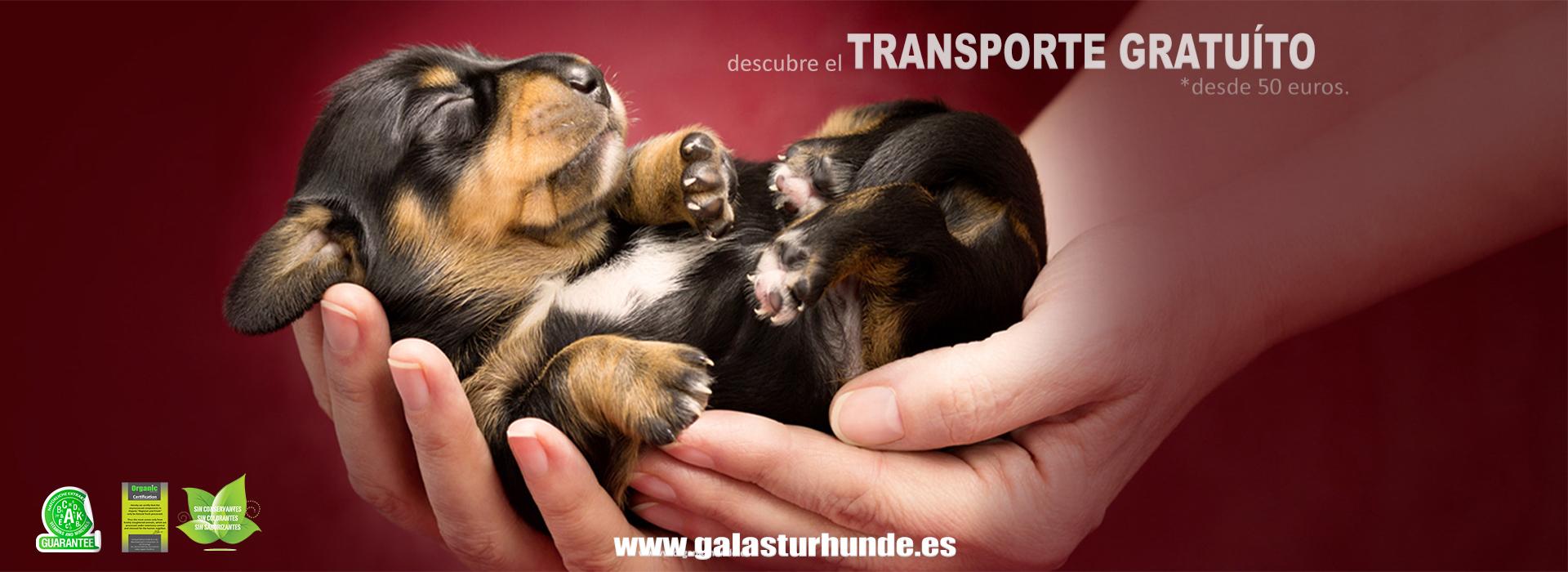Pienso Natural para perros Mucha Carne